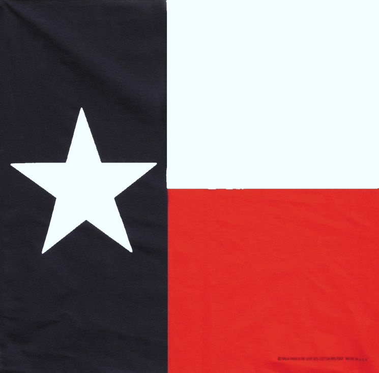 "Bandanna Texas Flag 22"" x 22"""